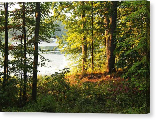 Picturesque Canvas Print by Mark  France