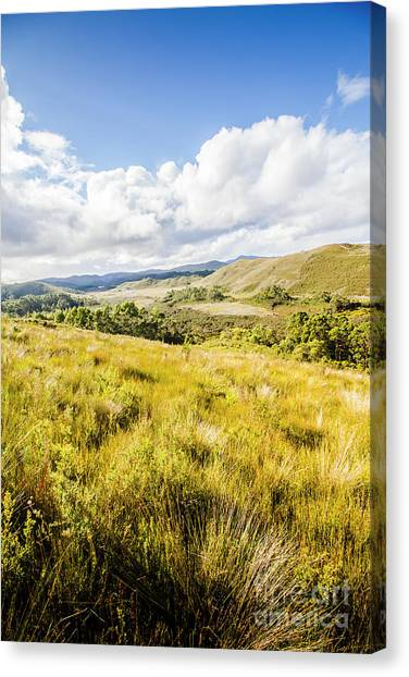 Adorable Canvas Print - Picturesque Tasmanian Field Landscape by Jorgo Photography - Wall Art Gallery