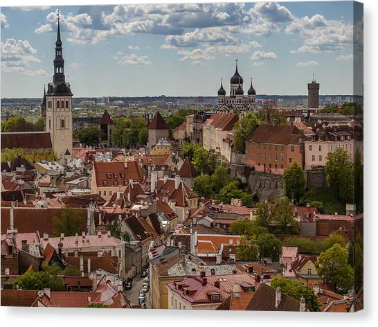 Sightseeing Canvas Print - Pidgeon Eye View by Capt Gerry Hare