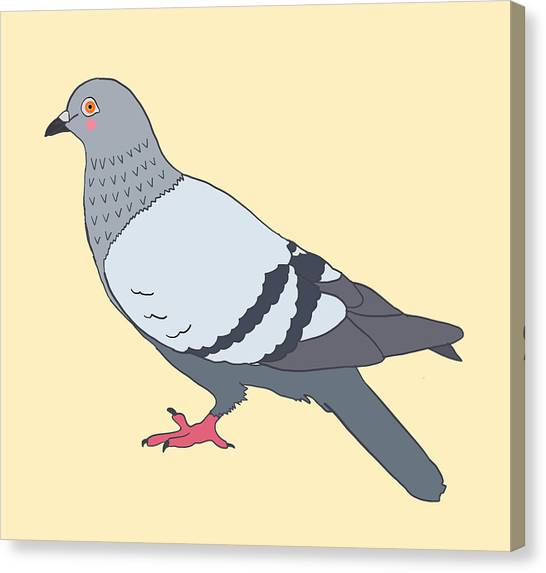 Pigeons Canvas Prints (Page #32 of 275) | Fine Art America