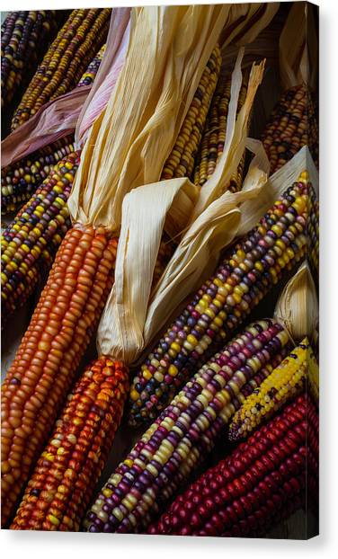 Indian Corn Canvas Print - Pile Of Indian Corn by Garry Gay
