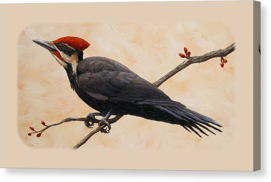 Woodpeckers Canvas Print - Pileated Woodpecker Phone Case by Crista Forest