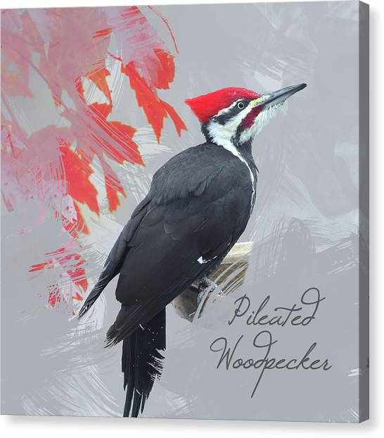 Pileated Woodpecker Watercolor Photo Canvas Print