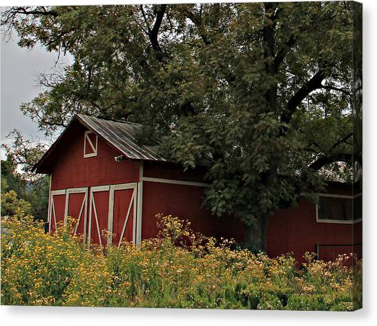 Pine Barn Canvas Print
