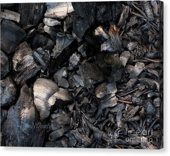 Pine Cone Cinders Canvas Print