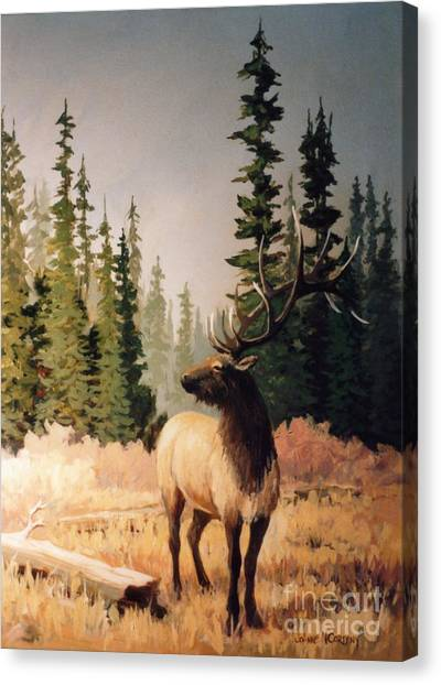 Pine Meadow Elk Canvas Print by JoAnne Corpany