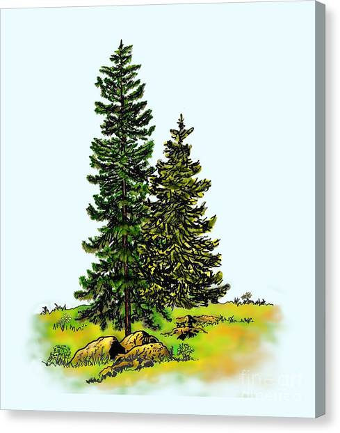 Pine Tree Nature Watercolor Ink Image 2b        Canvas Print