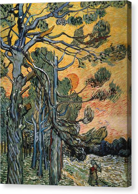Vincent Van Gogh Canvas Print - Pine Trees At Sunset by Vincent van Gogh