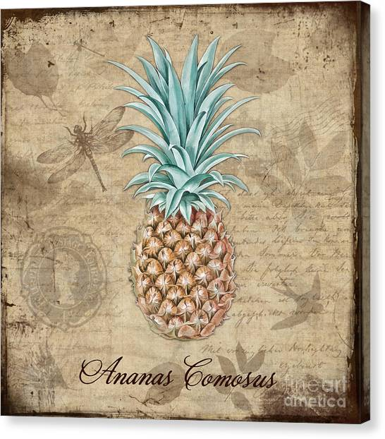Pineapples Canvas Print - Pineapple, Ananas Comosus Vintage Botanicals Collection by Tina Lavoie