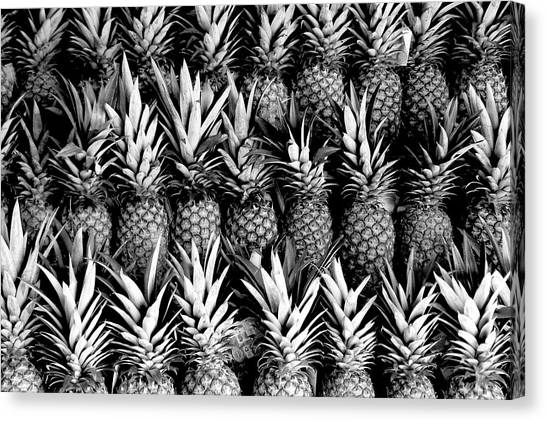 Pineapples In B/w Canvas Print