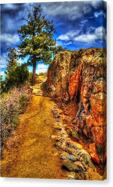 Ponderosa Pine Guarding The Trail Canvas Print