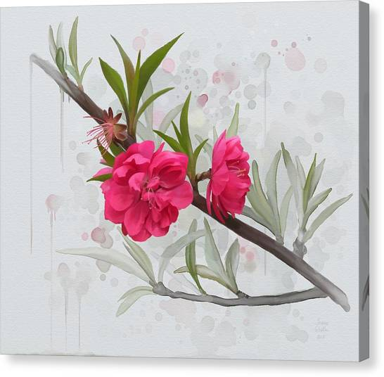 Canvas Print featuring the painting Hot Pink Blossom by Ivana Westin