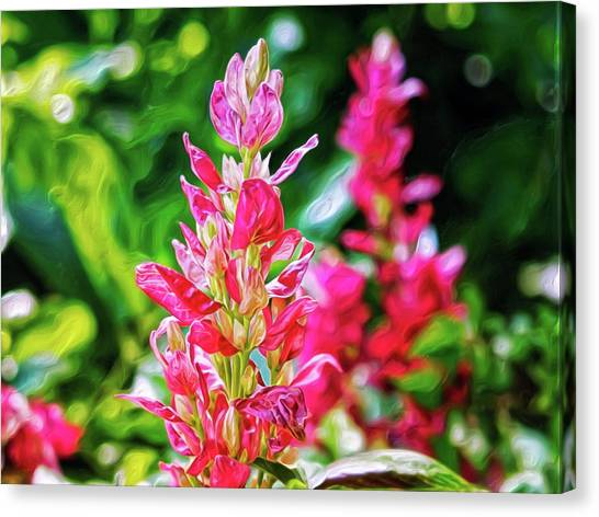 Canvas Print featuring the digital art Pink by Doctor Mehta