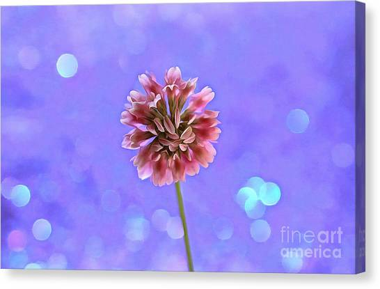 Clover Canvas Print - Pink Fairy by Krissy Katsimbras