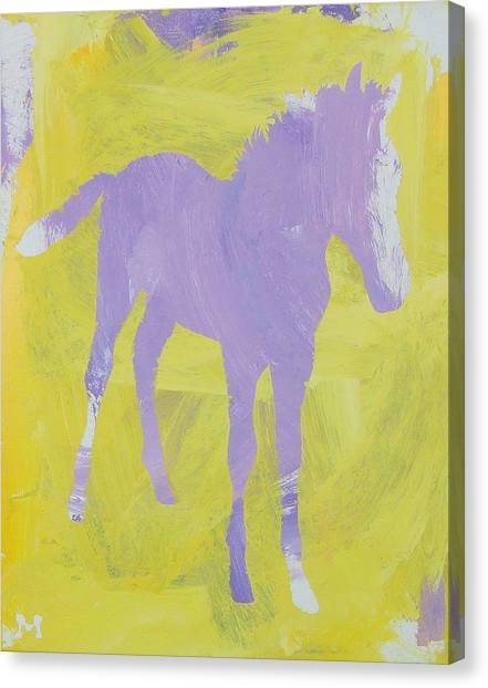 Pink Filly Canvas Print