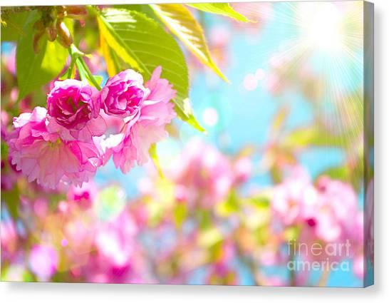 Pink  Flower Beautiful Canvas Print