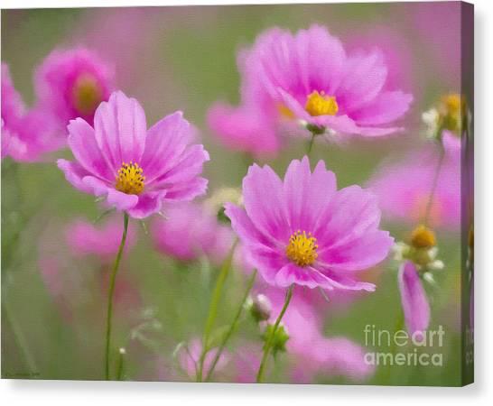 Painterly Canvas Print - Pink Flowers by Veikko Suikkanen