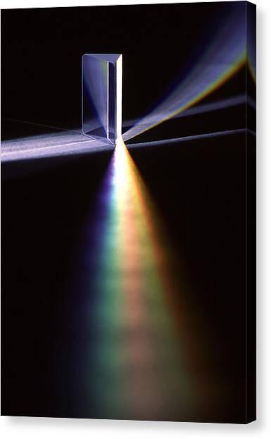 Pink Floyd Canvas Print - Pink Floyd Physics by Gerard Fritz