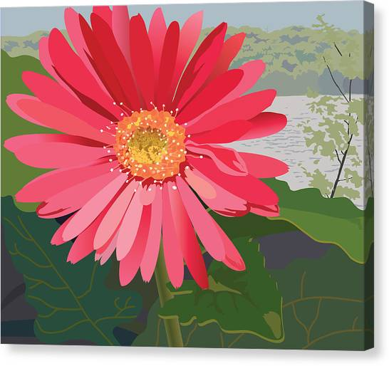 Pink Gerbera Daisy Canvas Print by Marian Federspiel