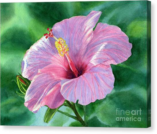 Hibiscus Canvas Print - Pink Hibiscus Flower With Leafy Background by Sharon Freeman