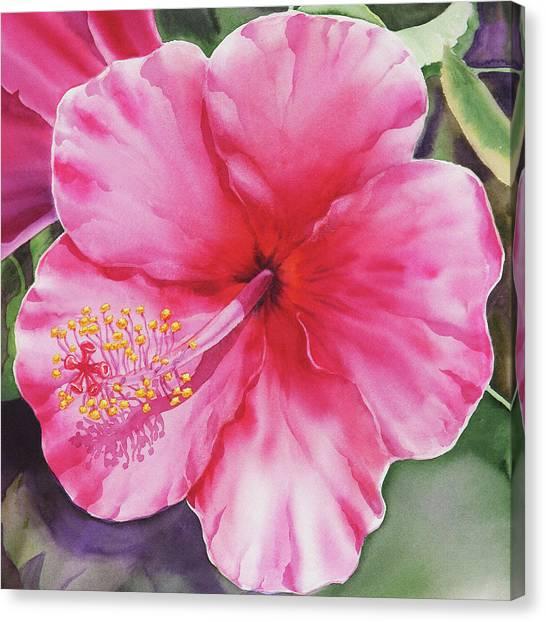 Hibiscus Canvas Print - Pink Hibiscus  by Irina Sztukowski