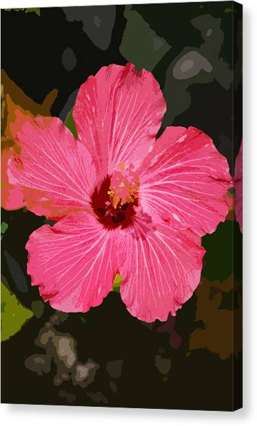 Pink Hibiscus Canvas Print by Kimberly Camacho
