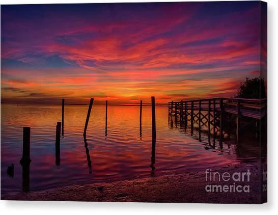 Pink Horizon Canvas Print