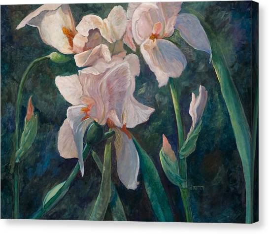 Pink Iris Canvas Print by Jimmie Trotter