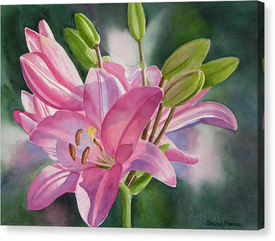 Lilies Canvas Print - Pink Lily With Buds by Sharon Freeman