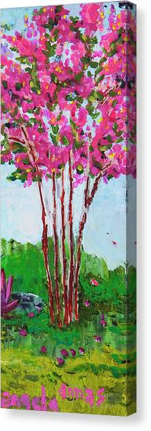 Pink Myrtle Canvas Print