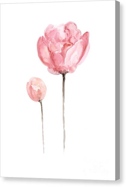 Watercolor Canvas Print - Pink Peonies Watercolor Painting by Joanna Szmerdt