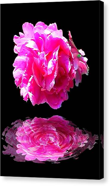 Canvas Print featuring the digital art Pink Peony Reflections by Deleas Kilgore