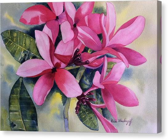 Pink Plumeria Flowers Canvas Print