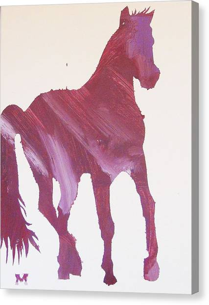 Pink Pony Canvas Print