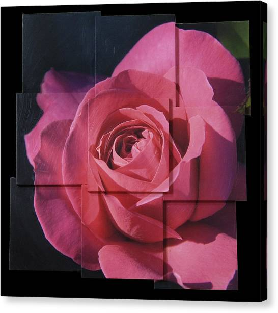 Pink Rose Photo Sculpture Canvas Print