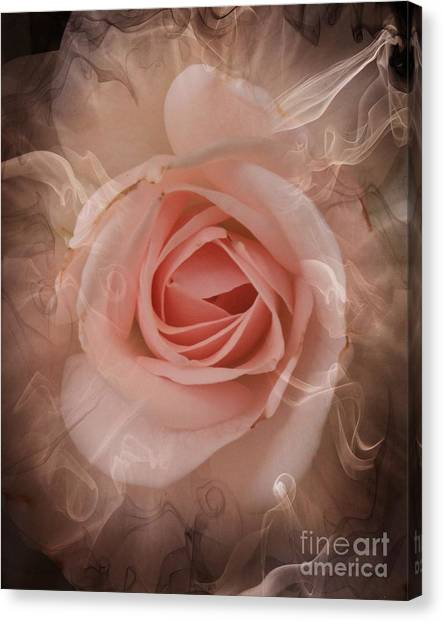 Pink Smokey Canvas Print