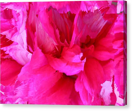Pink Splash Canvas Print