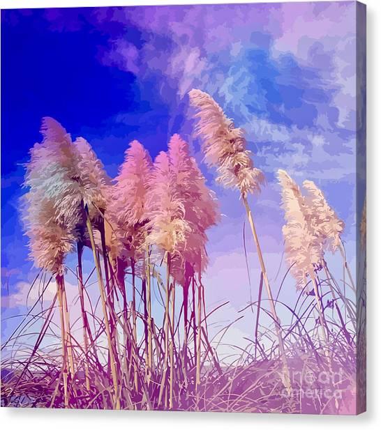 Pink Toi Toi Grasses Canvas Print