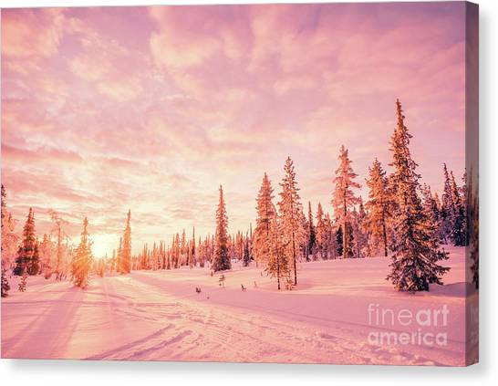 Winter Scenery Canvas Print - Pink Winter by Delphimages Photo Creations