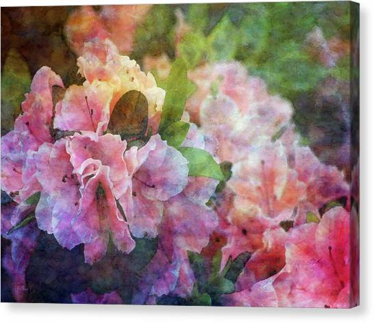 Pink With White Frills 1503 Idp_3 Canvas Print