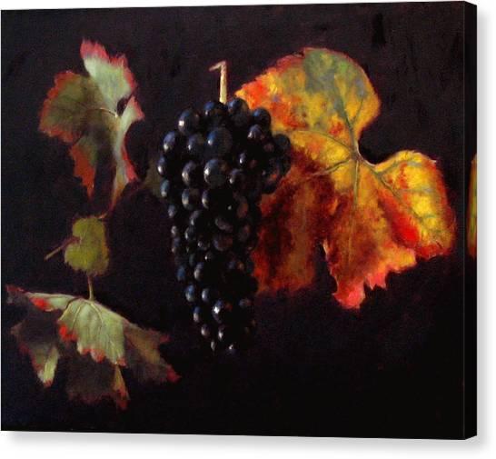 Pinot Noir Grape With Autumn Leaves Canvas Print by Takayuki Harada