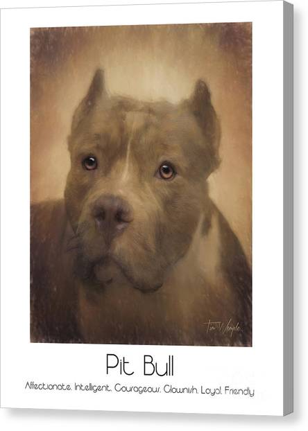 Pit Bull Poster Canvas Print by Tim Wemple