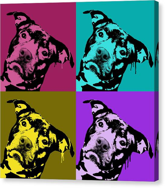 Pit Bull Canvas Print - Pit Face by Dean Russo Art