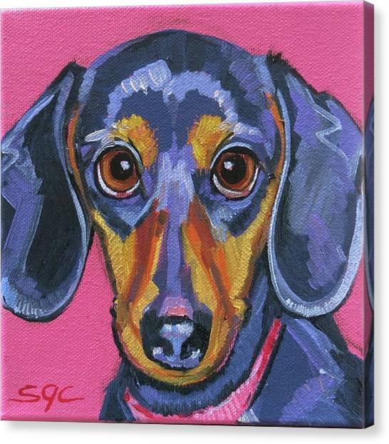 Pixie Canvas Print
