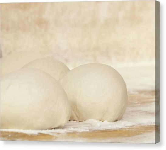 Pizza Dough At Rest Canvas Print