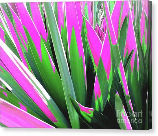 Plant Burst - Pink Canvas Print