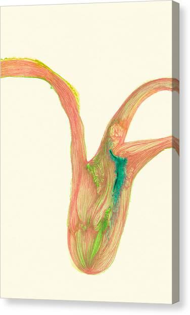 Plant - #ss14dw043 Canvas Print by Satomi Sugimoto