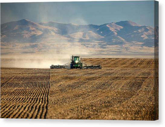 Mountain West Canvas Print - Planting Orangic Wheat by Todd Klassy