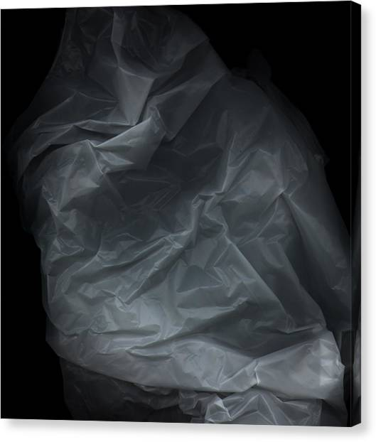 Plastic1 Canvas Print by Werner Hammerstingl