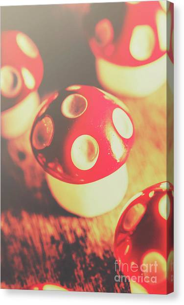 Mushrooms Canvas Print - Play Toys Of Imagination by Jorgo Photography - Wall Art Gallery